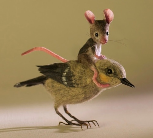 Of mice and birds